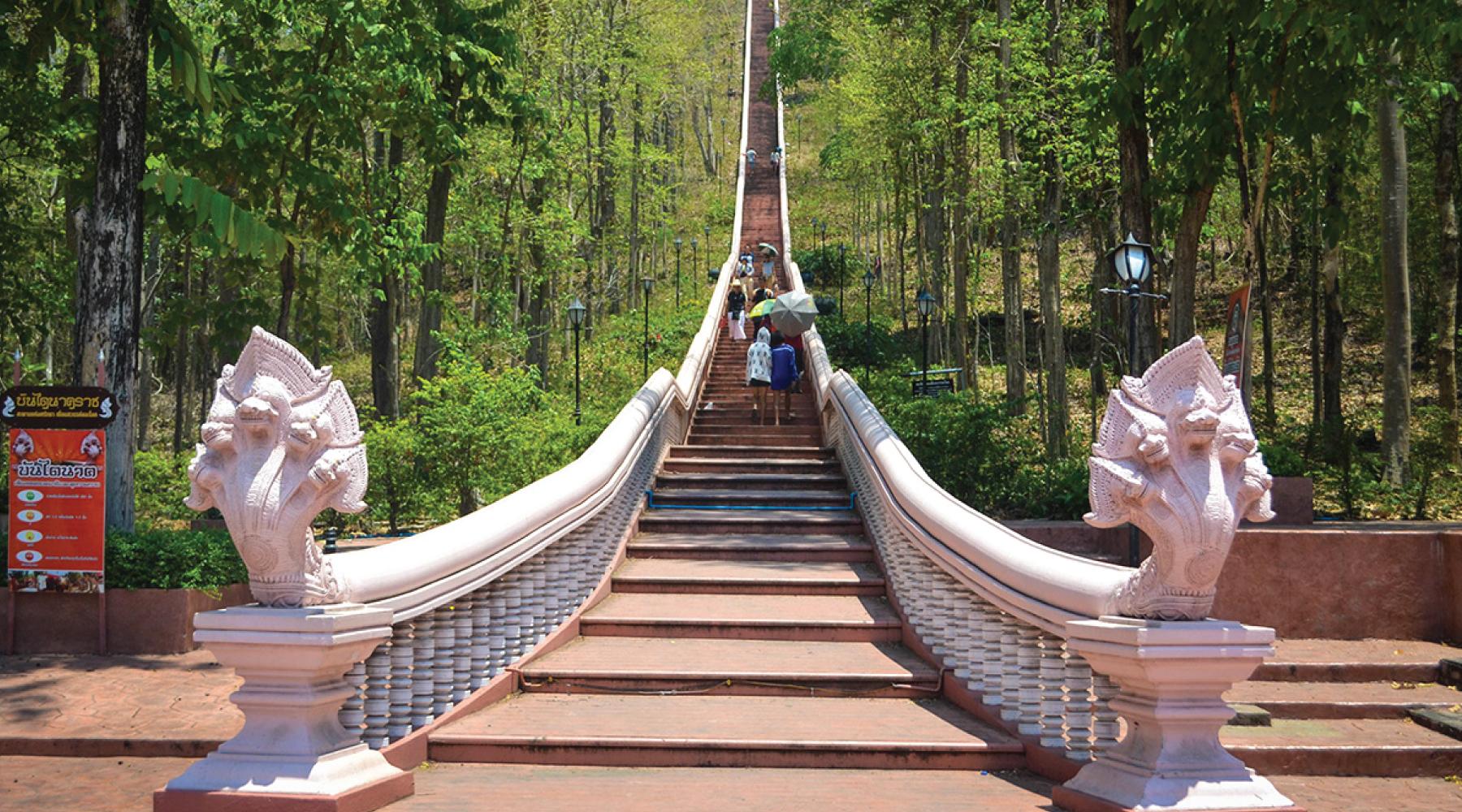 attraction-khao-kradong-forest-park-02